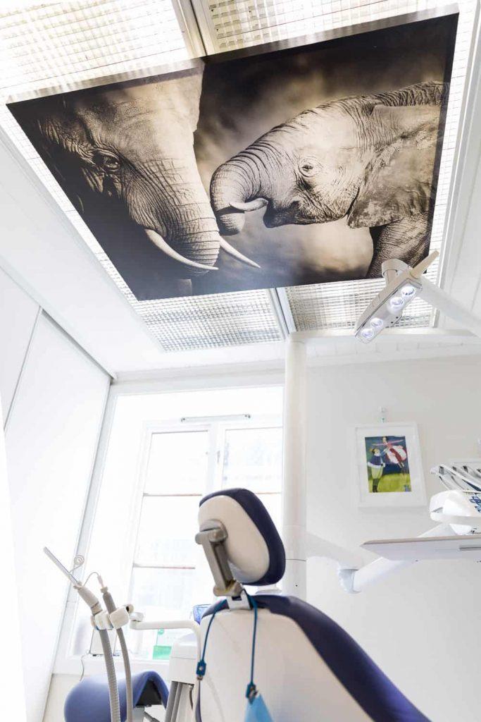 Behagelig Tannbehandling i Trondheim - Tannklinikken Dent